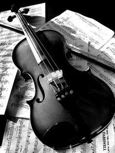 """Скрипка """"Чёрная птица"""""""