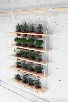 Des étagères suspendus pour pots de fleurs et plantes