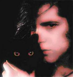 13 Best Danzig, for the love of cats images in 2018   Danzig