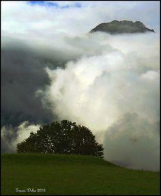 Amo la #nebbia, sa coprire i dettagli inutili delle cose e fa proiettare il pensiero nel luogo dove deve risiedere, dentro noi stessi. Amo la nebbia, perché è così introspettiva! Stephen Littleword