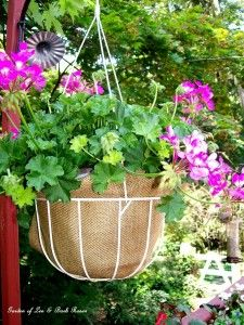 Save money! Use burlap to reline your container planters! http://ourfairfieldhomeandgarden.com/burlap-a-thrifty-container-liner/