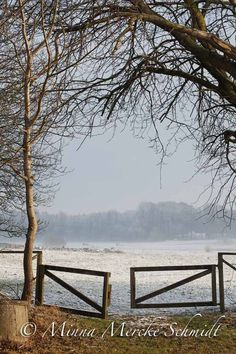 vinter snö natur  minna mercke schmidt-2