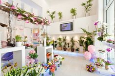 800 Flower «  almasaood-ngc.com