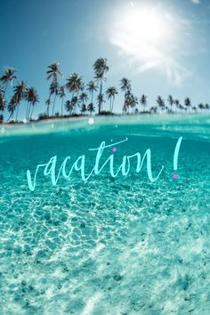 Summer sun fun clear blue green water and white sands on the ocean beach sea with palm trees like in California Hawaii island paradise Summer Vibes, Beach Quotes, Summer Quotes, Belle Photo, Beautiful Beaches, Beautiful Ocean, Beautiful Scenery, Amazing Nature, Beautiful World