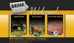 Brink Genetics, yellow, black and grey website design, meat, pigs, cattle, Iowa, EDJE technologies