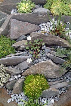 Landscaping With Rocks, Front Yard Landscaping, Backyard Landscaping, Landscaping Ideas, Backyard Ideas, Sloped Backyard, Modern Backyard, Rock Garden Images, Rock Garden Design