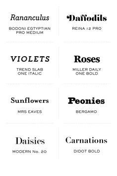 Spring has sprung serif fonts
