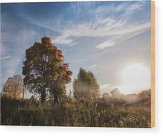 #AnnaMatveeva #Photographers #FineArtAmerica #ForSale #PrintsForSale #FineArtPrints #ArtHome #Artdecor #Decor #Homedecor #Beautiful #WoodPrints #Sunny #Autumn    http://anna-matveeva.pixels.com/