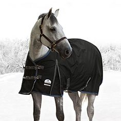 Our SmartPak Ultimate Turnout is backed by a 10-year Indestructible Guarantee!