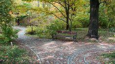 Hungria, Vácrátót, Arboretum
