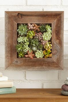 Succulent Living Wall Planter Kit - $118 - Your wife doesn't have to have a green thumb to keep this stunning display alive, just a spray bottle full of water. Then, she can let it serve as a centerpiece or a hanging display. See other great anniversary or Valentine's Day gifts at HouseBeautiful.com.