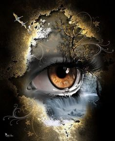 DIY Diamond Art Painting Eye Full Drill Round Diamond Embroidery Picture Rhinestone Diamond Mosaic Cartoon Home Decor Eye Art, Eye Drawing, Diamond Painting, Eyes Artwork, Art Painting, Painting, Cross Paintings, Artwork, Diamond Drawing