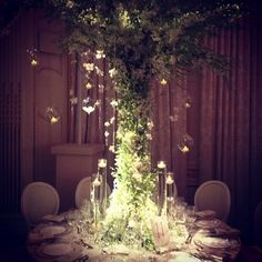 Orchid tree table centres for a wedding at the Mandarin Oriental.