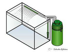 Zewnętrzny filtr akwariowy - najbardziej popularne filtry do akwarium. Charakteryzują się bardzo dużą powierzchnią filtracyjną i wydajnością.
