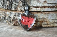 terrarium necklace with real red mossheart necklace by ZokaKurylov