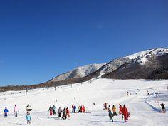 蒜山高原 ちびっこゲレンデ 岡山 アウトドア #OKayama