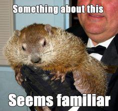 Groundhog Day joke!
