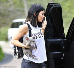 Girls' best friend: Kylie Jenner enjoyed a day out in Los Angeles with her new puppy Norm ...