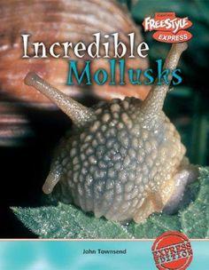 Incredible Mollusks (Incredible Creatures)