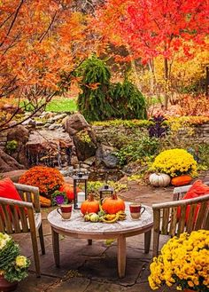 For a harmonious look, coordinate mums with the colors of your yard. More ideas for decorating with mums: http://www.midwestliving.com/garden/flowers/outdoor-fall-decorating-with-mums/?page=9