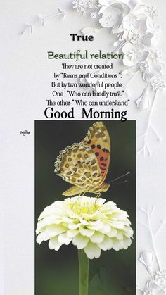 Conception, Good Morning, Canning, Beautiful, Buen Dia, Bonjour, Home Canning, Good Morning Wishes, Conservation
