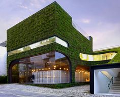 A living building! Belgian fashion designer Ann Demeulemeester's store in Seoul, South Korea by Mass Studies Architects has grass walls, inside and out.