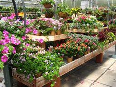 garden center displays - Bing Images