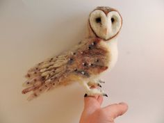 Hey, I found this really awesome Etsy listing at https://www.etsy.com/listing/119963456/needle-felted-owl-barn-owl-needle-felted