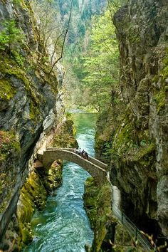 The Infinite Gallery : Gorges de l'Areuse