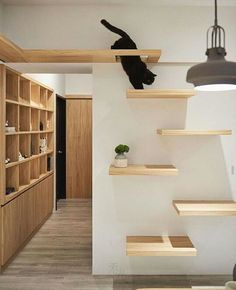 Simple and elegant cat furniture / shelves - decoration for chat / cat decoration . - Simple and elegant cat furniture / shelves – deco for chat / cat deco … … - Cat Wall Shelves, Shelves For Cats, Tree House Designs, Cat Tree Designs, Cat Playground, Playground Design, Playground Ideas, Pet Furniture, Modern Cat Furniture