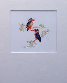 Pygmie Kingfisher A5 Giclée Print www.louisehennigs.co.za
