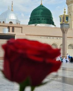 Islam Beliefs, Islam Religion, Islam Muslim, Muslim Pray, Al Masjid An Nabawi, Mecca Masjid, Islamic Images, Islamic Pictures, Islamic Quotes