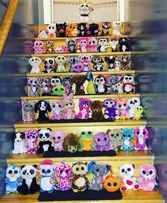 #fanteature - @ncgarvey7 - Look at this impressive collection! #beanieboos #tyinc