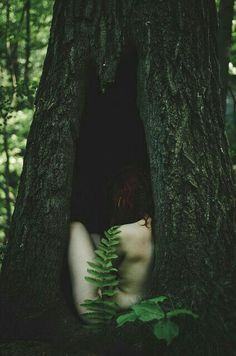 Pinterest: @MagicAndCats ☾ Écorchée