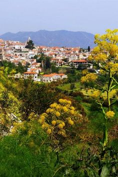 Mountain village of Lefkara - Troodos by St. Gerardi
