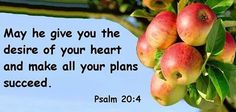 May he grant you your heart's desire and fulfill all your plans!  Psalms 20:4