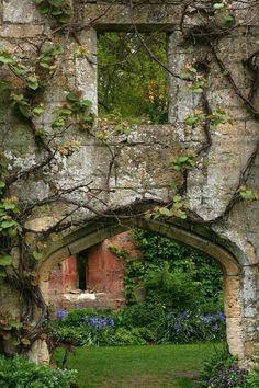 brick and vines