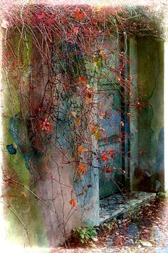 colori d'autunno  claudio santoni