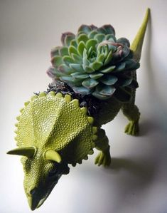 More is a must!: Animal planters