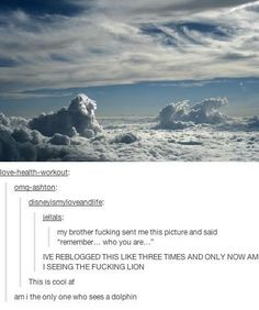 """itsstuckyinmyhead: """"The Lion King and Tumblr """""""