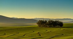 Swartland 1 South Africa, Golf Courses, Road Trip, Landscape, Nature, Photography, Travel, Beautiful, Ideas