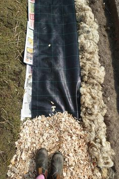 Bokashi, Black Jeans, Green, Plants, Gardening, Dreams, Gardens, Taurus, Black Denim Jeans