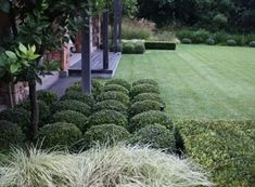 topiary and modern grasses Front House Landscaping, Modern Landscaping, Outdoor Landscaping, Landscaping Plants, Formal Gardens, Outdoor Gardens, Landscape Design, Garden Design, Lush