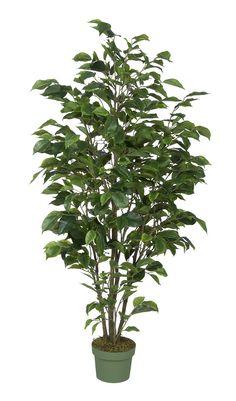 Artificial 4ft Ficus Tree