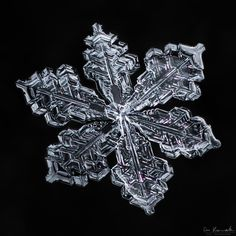 Photo by Don Komarechka 52 Snowflake Photography, Macro Photography, Snowflake Images, I Love Snow, Ice Crystals, Sacred Geometry, Mother Nature, Frost, Cool Designs