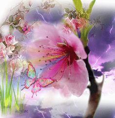 Have a Magical Day☺ Beautiful Butterflies, Beautiful Roses, Butterfly Art, Flower Art, Watercolor Animals, Watercolor Art, Dank Gifs, Foto Gif, Morning Flowers