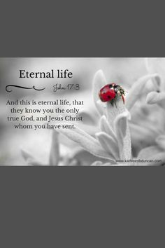 We need to get to know God. Seek Him. Spend time studying His Word then apply it in our lives. Pray. Worship. Talk with Him. Listen to Him. Do you know the One True God? We can find healing in our grief. We find healing, hope, peace, and joy in the One True God. Do you have eternal life? You can begin living eternally today.