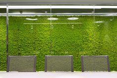 Enisa & Verde Profilo® - MOSSwall® application | Giardino Verticale | Giardini e Orti Verticali