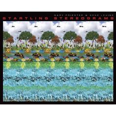 Startling Stereograms by Gary W. Priester and Gene Levine (Feb 1, 2012)  Just amazing!  Relax your eyes and look at the clouds in the background.
