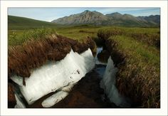 permafrost :permafrost is including rock or (cryotic) soil, at or below the freezing point of water 0 °C °F) for two or more years. Most permafrost is located in high latitudes Image Search, Waterfall, Wildlife, Environment, Country Roads, Ocean, Earth, Mountains, Illustration
